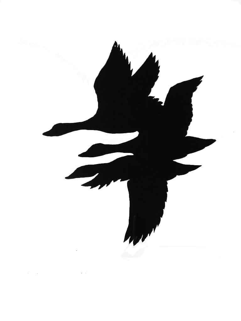 768x1024 Flying Mallard Duck Silhouette