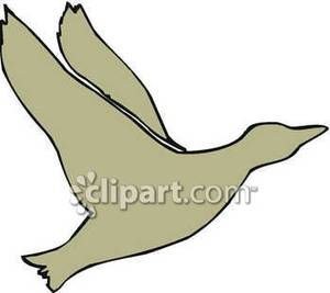 300x267 Silhouette Of A Flying Duck