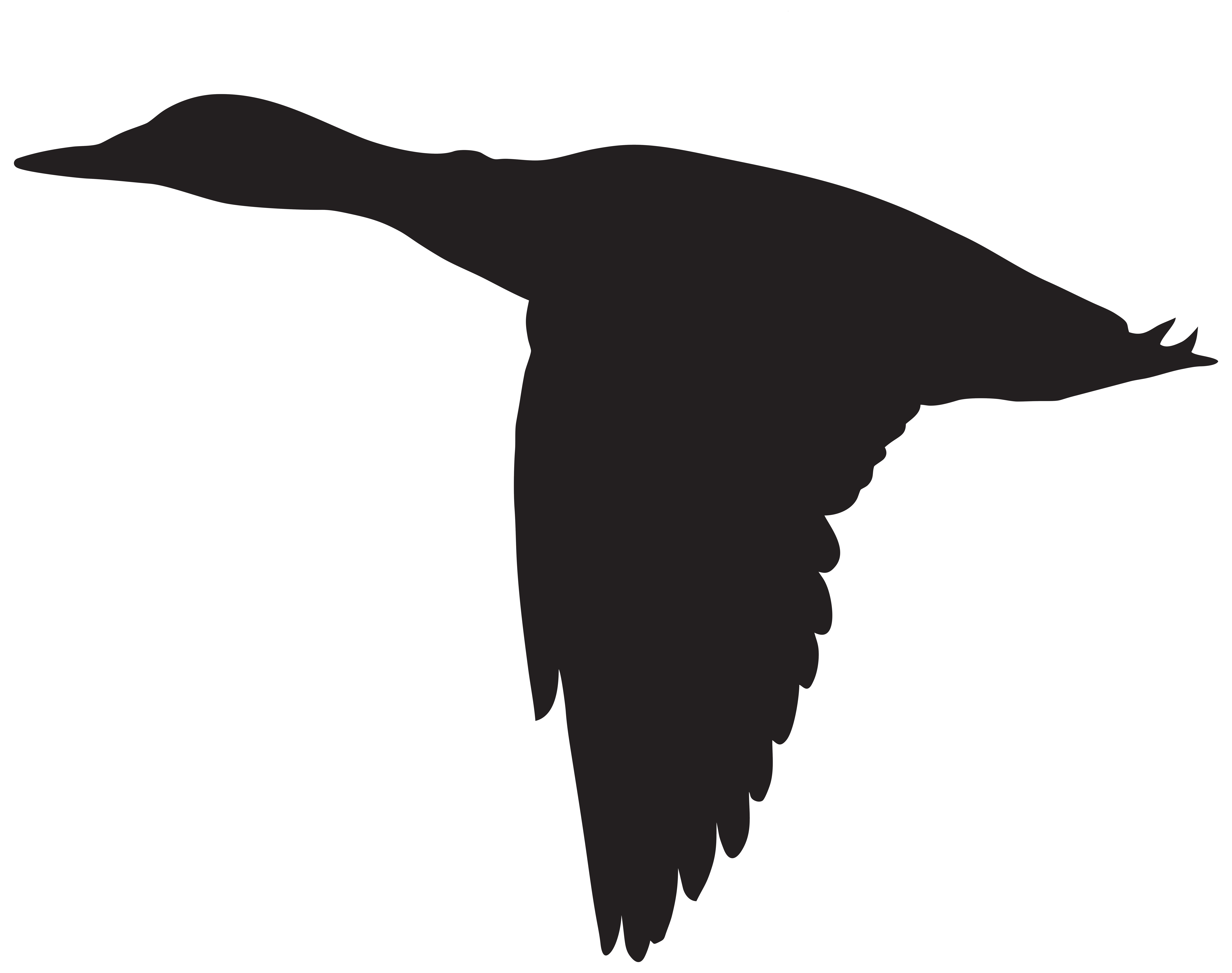 8000x6316 Duck Flying Silhouette Png Clip Art Imageu200b Gallery Yopriceville