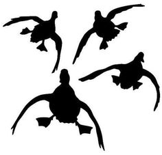 236x227 Flying Duck Silhouette Jukin'' Four Ducks Waterfowl Decal