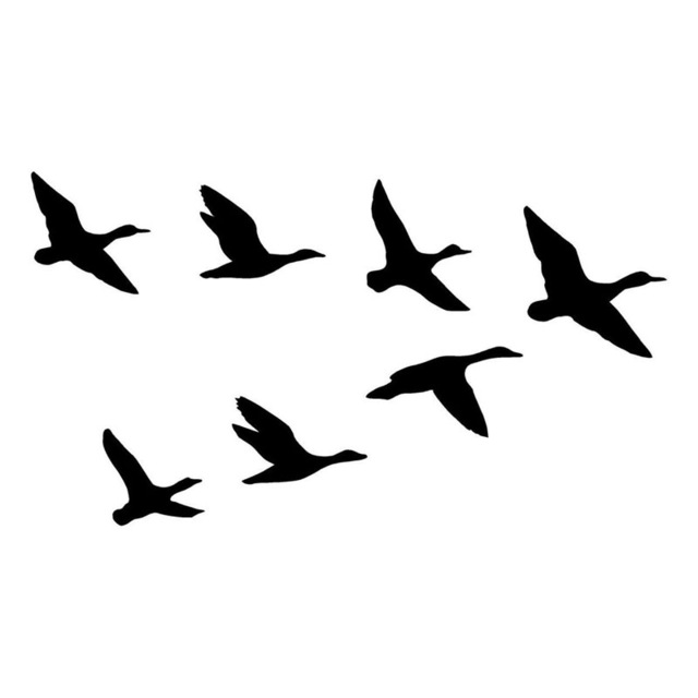640x640 20.311.4cm A Group Of Wild Duck Funny Car Styling Decal Hunting