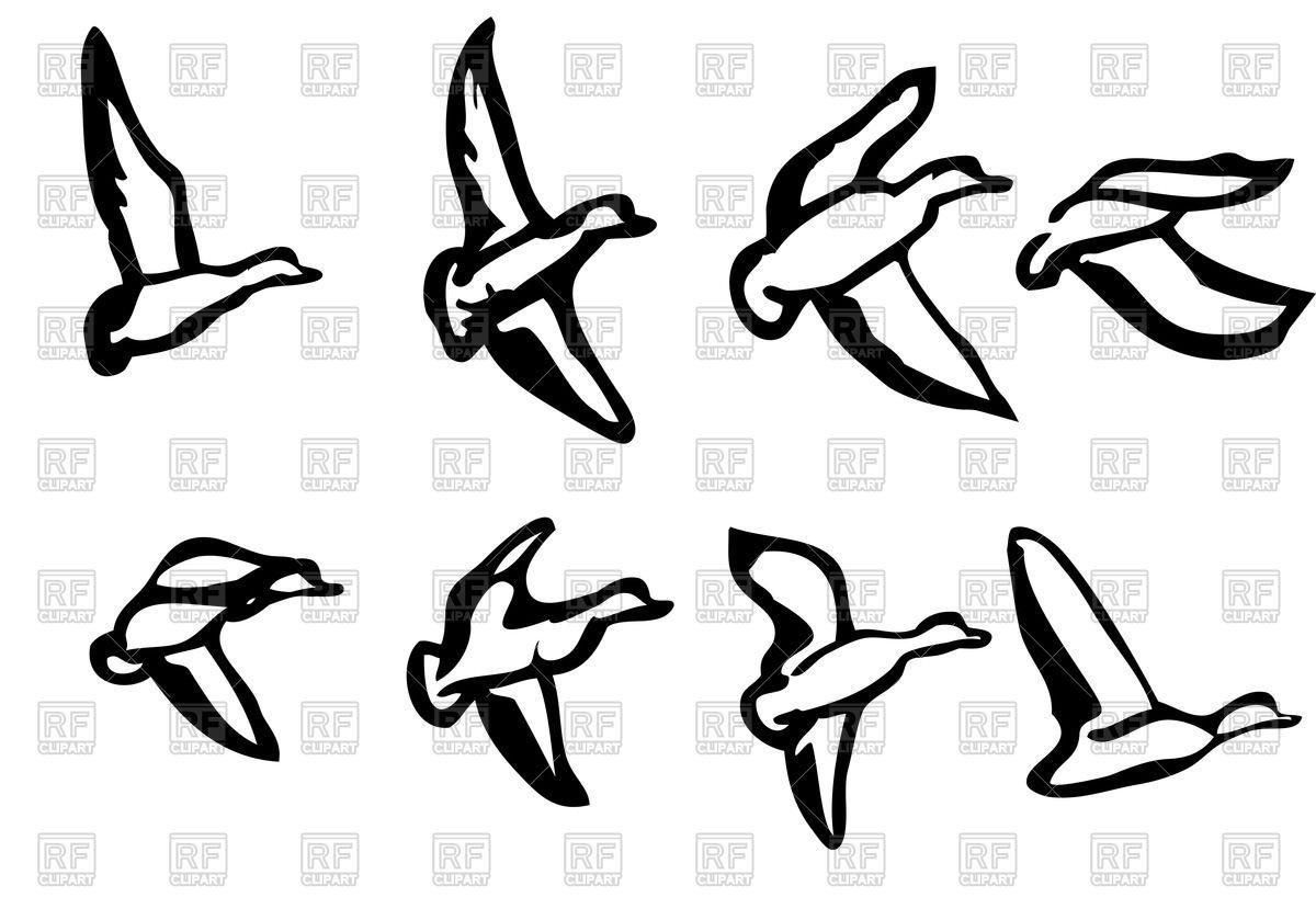 1200x839 Ducks Silhouette Royalty Free Vector Clip Art Image