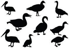 236x165 Awesome Duck Silhouette Vectors Added For A Perfect Download