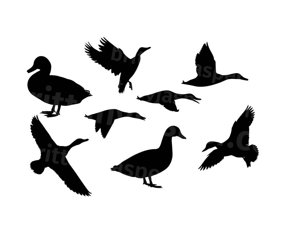 1000x794 Duck Silhouettes Svg Vector Clip Art