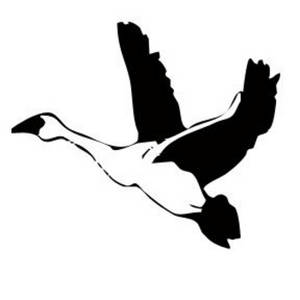 300x300 Clipart Picture Of A Goose In Flight