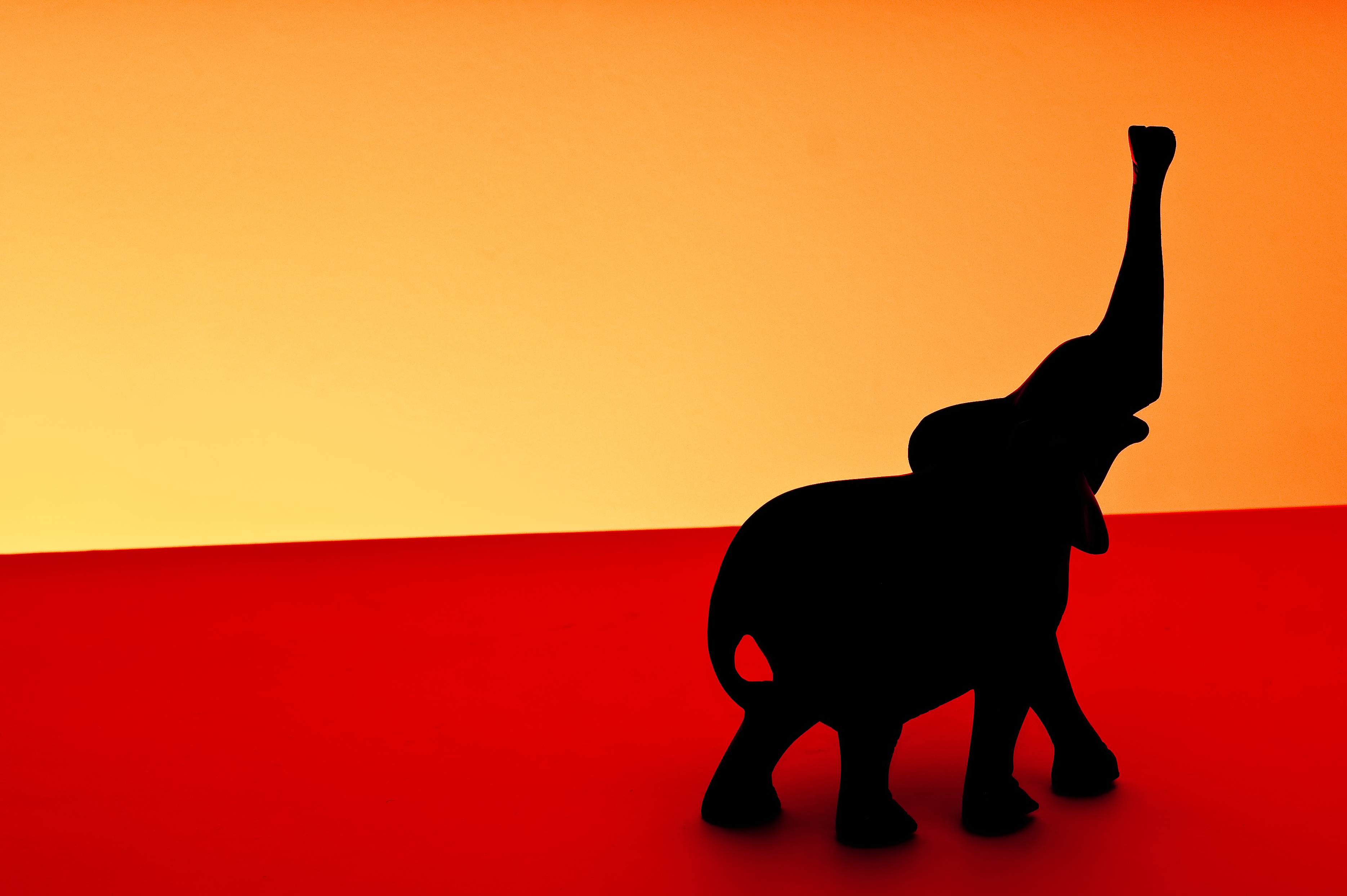 3739x2488 Wallpaper Africa, Sunset, Shadow, Red, Elephant, Black, Oneaday