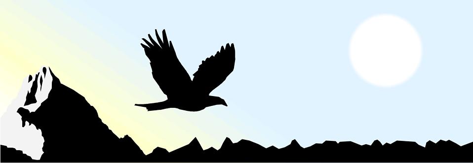 958x331 Eagle Free Stock Photo Illustrated Silhouette Of An Eagle