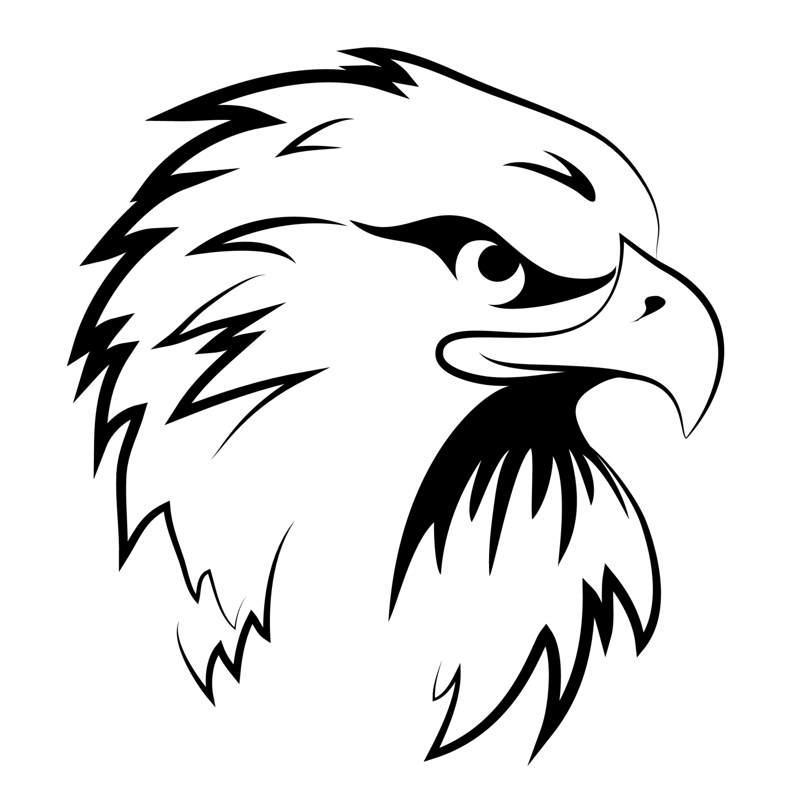 1581x1600 Eagle Head Free Vector 4vector