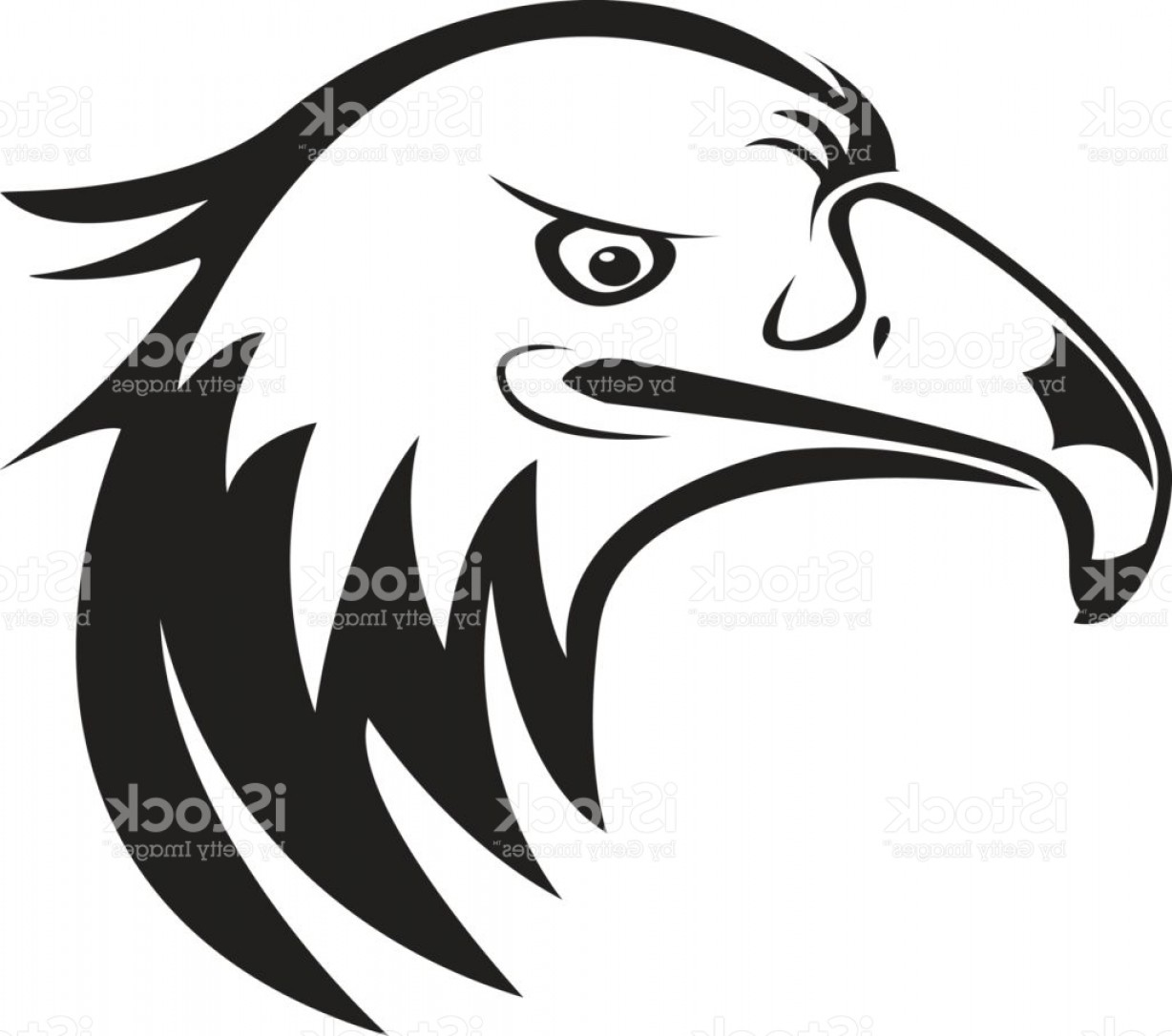 1228x1086 Eagles Head Silhouette Vector Arenawp