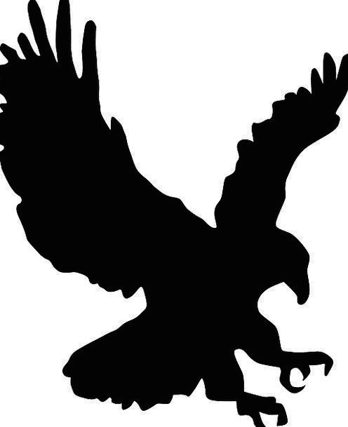 Eagle In Flight Silhouette