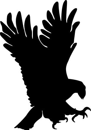 310x441 Sombra De Bird
