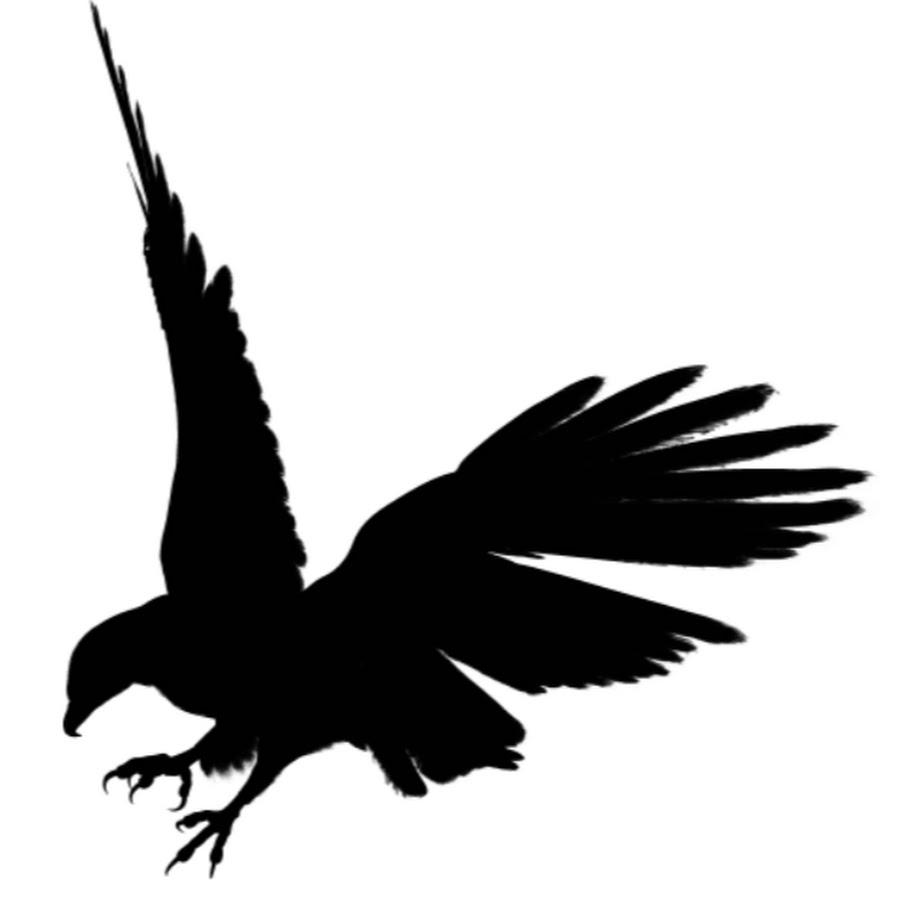 900x900 Black Eagle Clipart Shadow 3076223