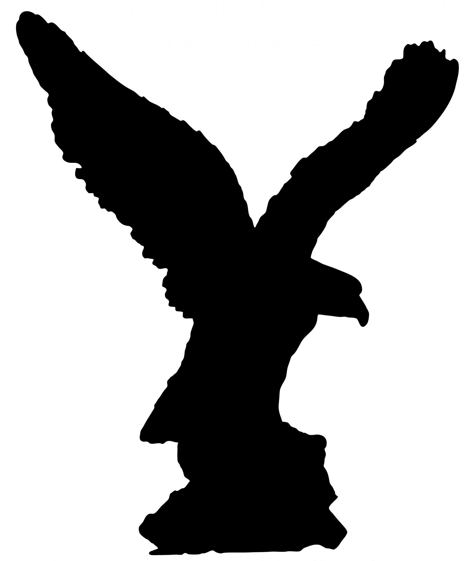 1600x1920 Eagle Bird Silhouette Free Stock Photo