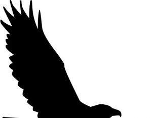 310x233 American Background With Eagle Silhouette Free Vector Free