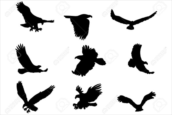 Eagle Silhouette Flying