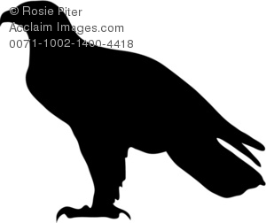 300x252 Eagle Silhouette Clipart Amp Stock Photography Acclaim Images