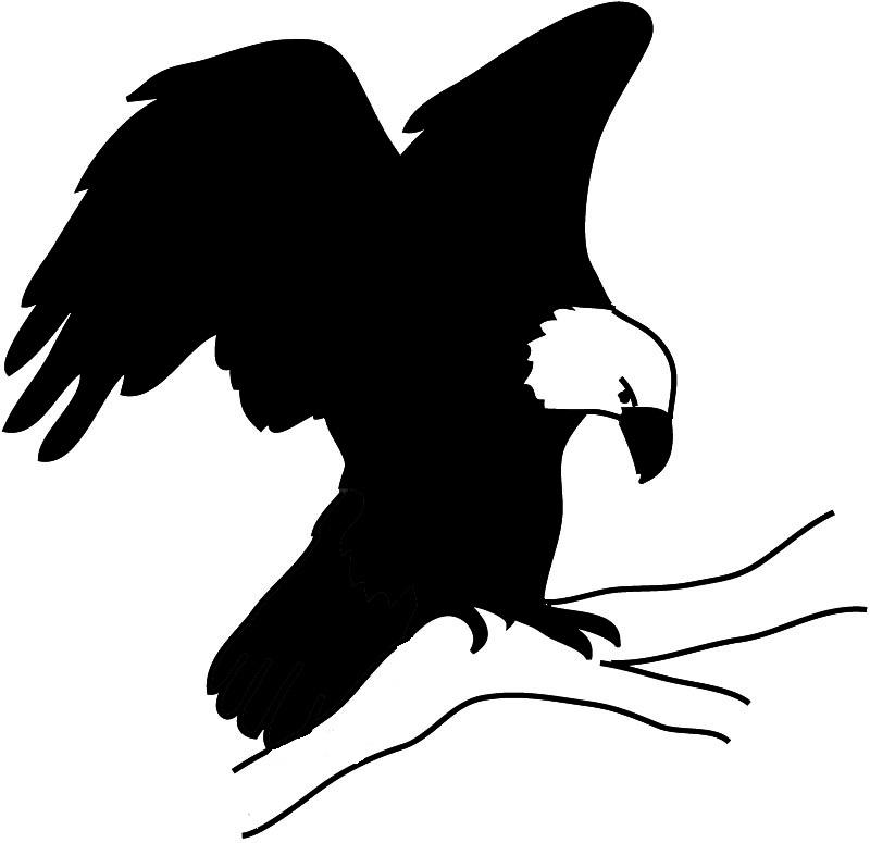 800x775 Bird Silhouettes