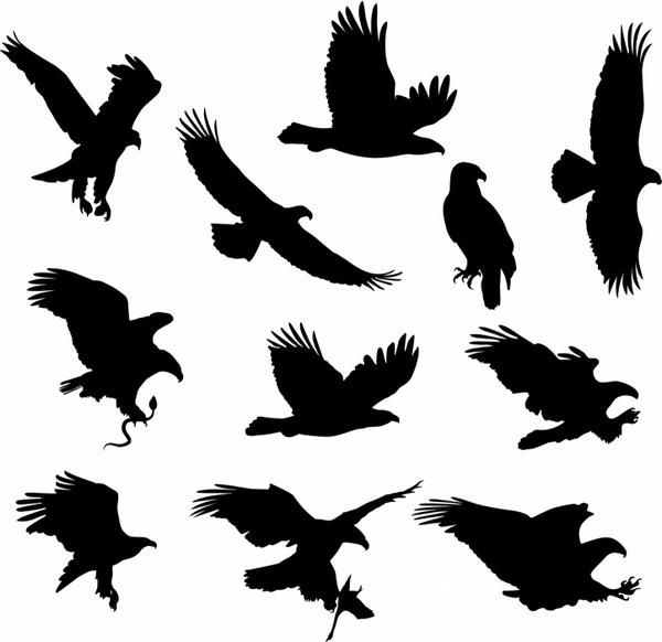 600x582 Eagles Free Vector In Adobe Illustrator Ai ( Ai ) Format For Free