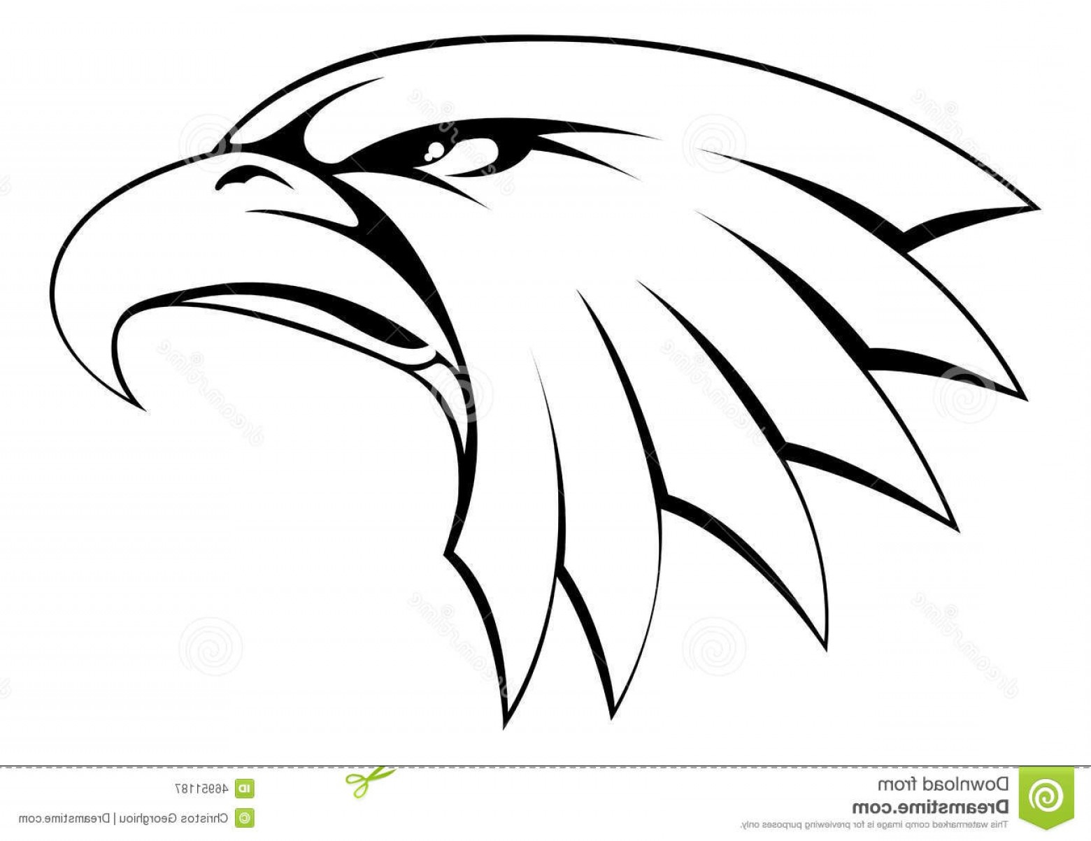 1560x1203 Eagles Head Silhouette Vector Arenawp