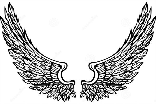 600x400 Eagle Illustrations