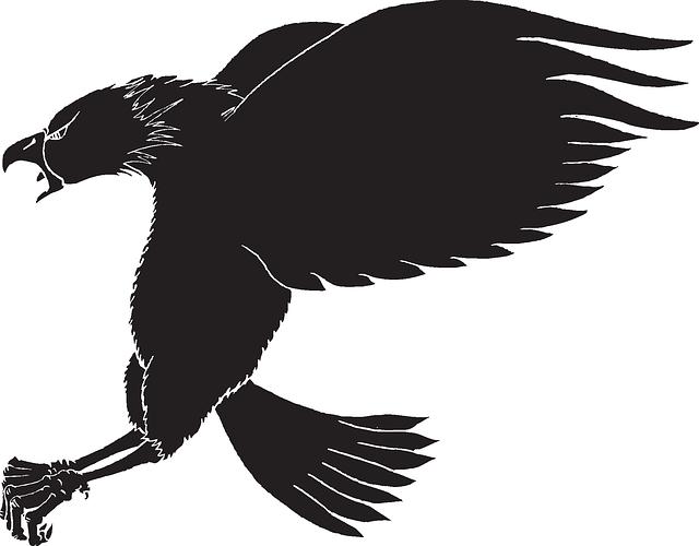 640x500 Silhouette, Eagle, Bird, Wings, Animal, Landing