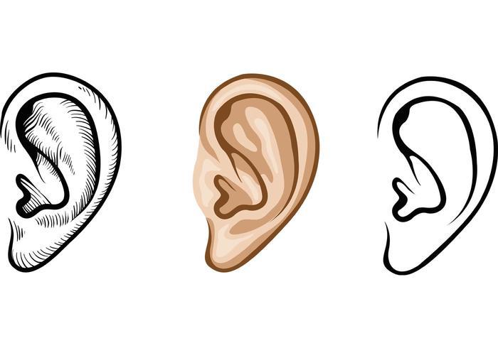 700x490 Human Ear Vectors