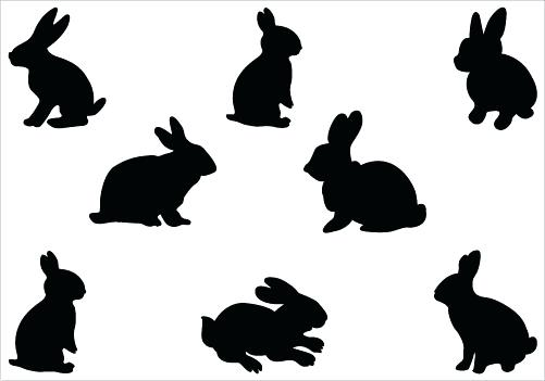 501x351 Bunny Head Outline Template Printable Coloring Rabbit Silhouette