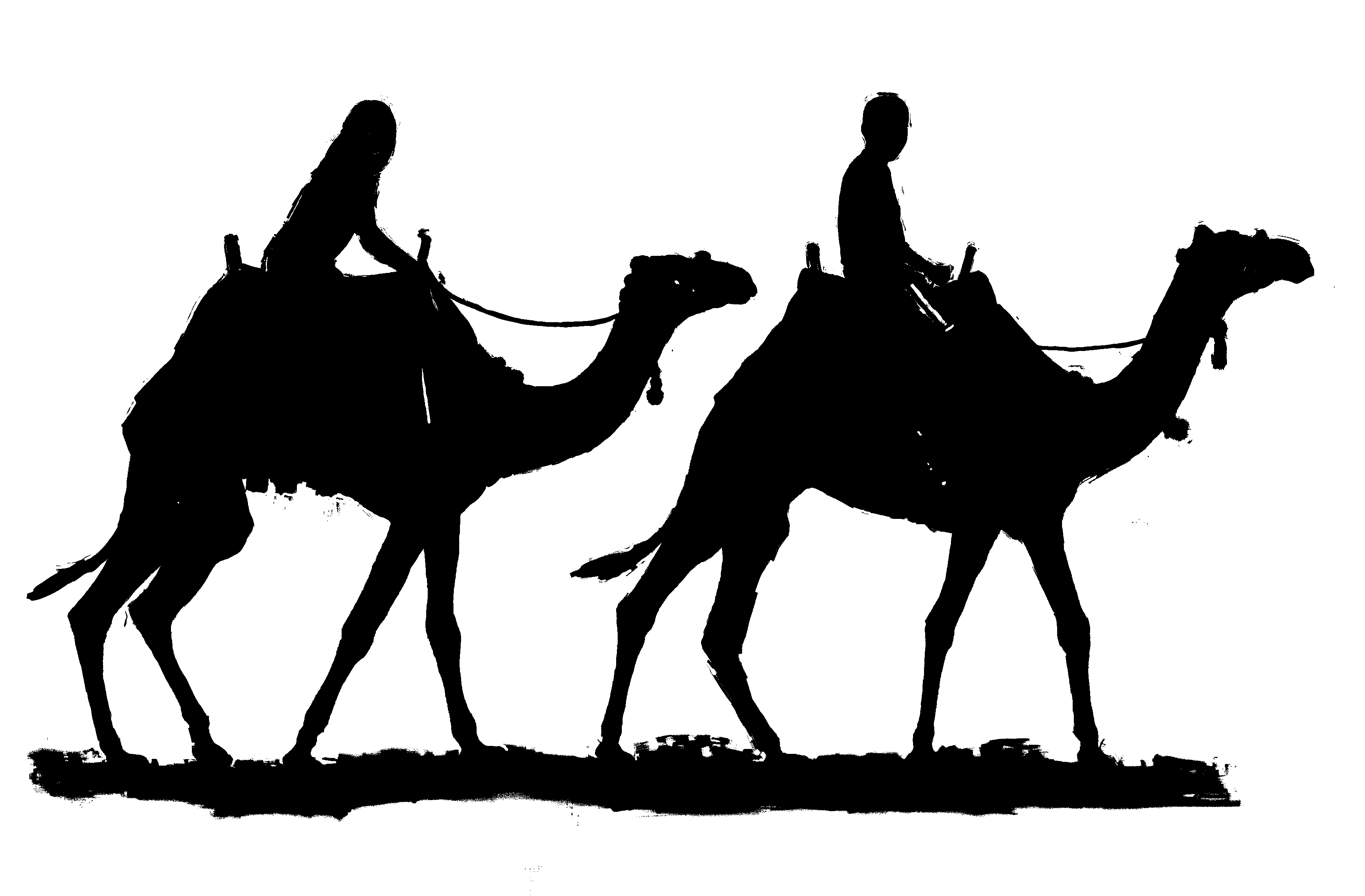 3600x2364 Camels Clipart Egyptian Pencil And In Color Camels Clipart