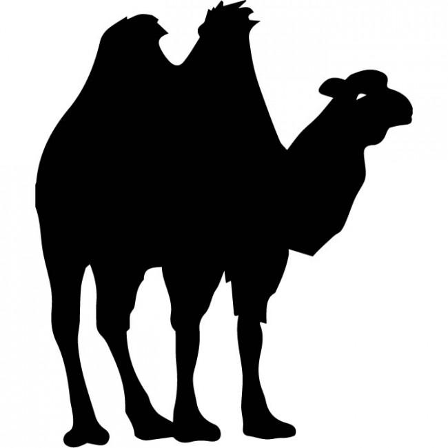 650x650 Camel Wall Sticker Wild Animals Wall Decal Egyptian Home Decor