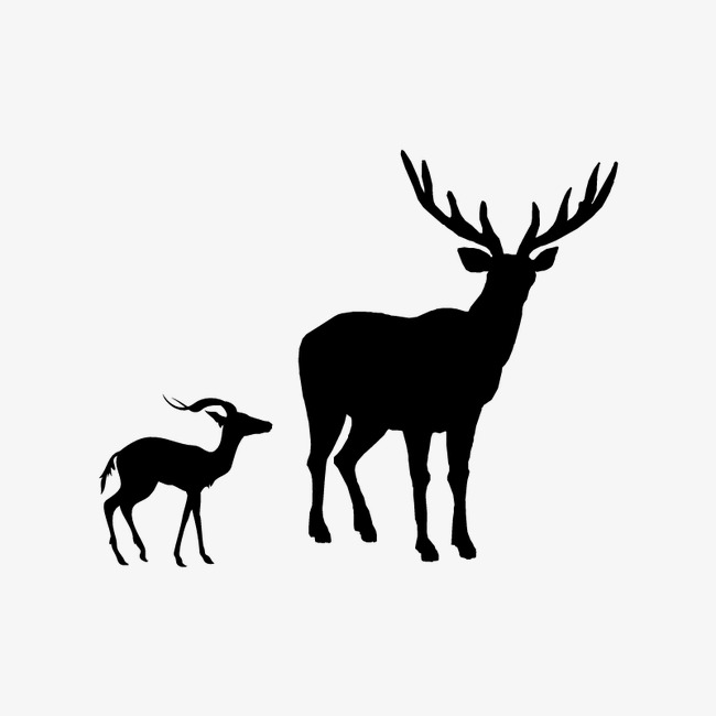 650x650 List Of Synonyms And Antonyms Of The Word Elk Shadow