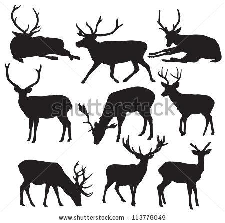 450x445 Deer Clipart Drink Water