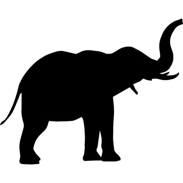 626x626 Perfil De Elefante Trompa Dibujo