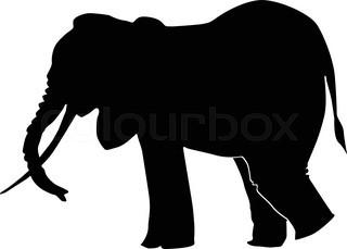 320x229 Vector Elephant Silhouette Stock Vector Colourbox