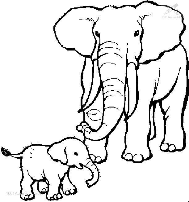 Fein Elefant Farbseite Fotos - Ideen färben - blsbooks.com