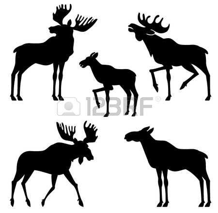 450x441 Elk Clipart Vector