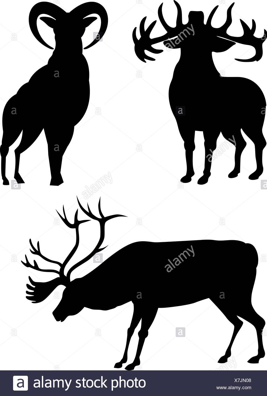 938x1390 Elk Silhouette Stock Photos amp Elk Silhouette Stock Images
