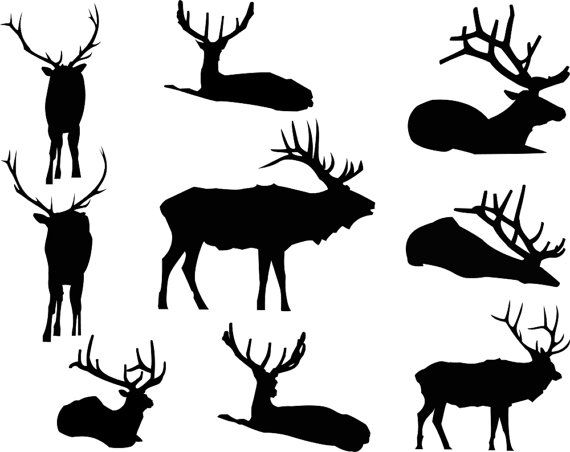 570x452 Elk Silhouettes Clipart, Graphic Digital Vector Instant Download