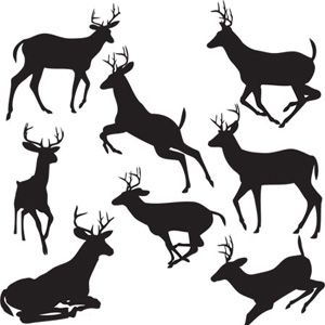 300x300 Black Deers Vector Download Printables Silhouettes