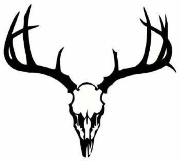 600x535 Deer Skull Free Images