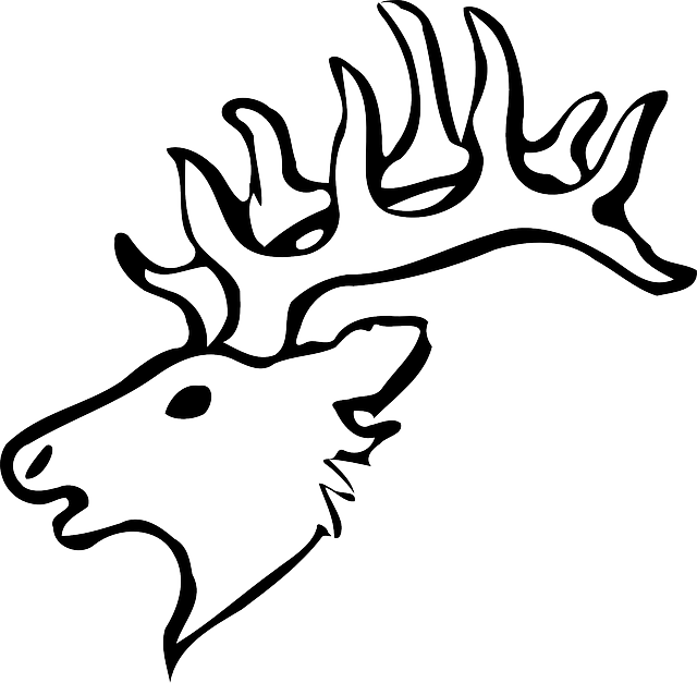 640x627 Head, Silhouette, Face, Skull, Cartoon, Deer, Heads