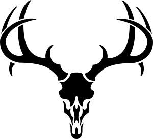 300x274 Deer%20skull%20drawing Deer Pics Antlers, Cricut