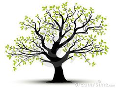 236x179 Tree Silhouette An Impressive Tree Silhouette 3x2 More Details