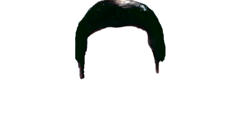 816x449 Elvis Hair PNG Transparent HairPNG Images PlusPNG