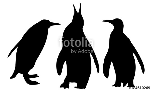 500x300 Silhouette Of Three Penguins Stock Image And Royalty Free Vector