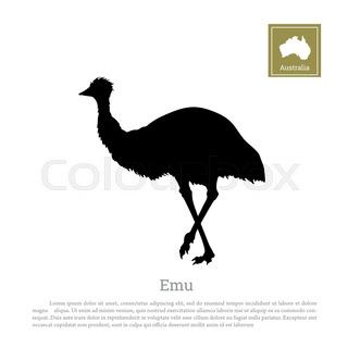 320x320 Australian Landscape. Black Silhouette Of Emu Ostrich On White