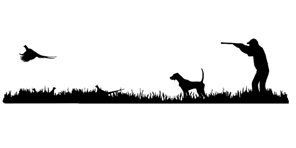 1024x512 English Pointer Bird Dog, Quail Rise Upland Hunting Scene Decal