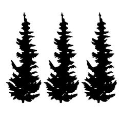 236x236 Image Result For Evergreen Trees Silhouette Printable