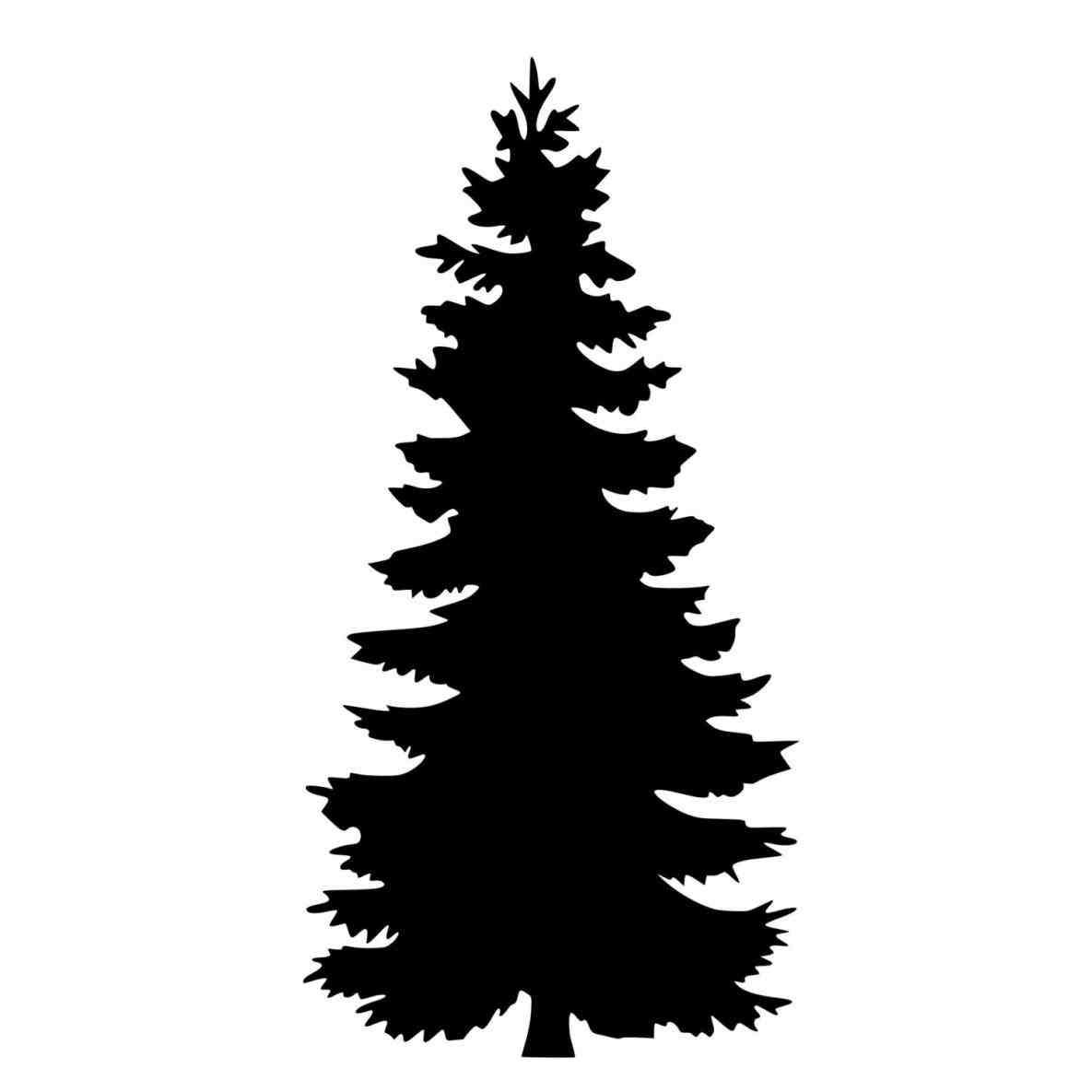 1185x1185 Evergreen Tree Silhouette.jpg National Parks