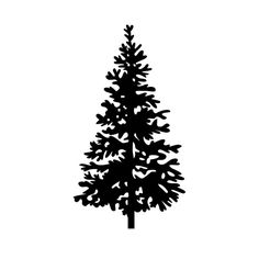 236x236 Tree Clip Art Pine Tree Clipart Free Projects To Try
