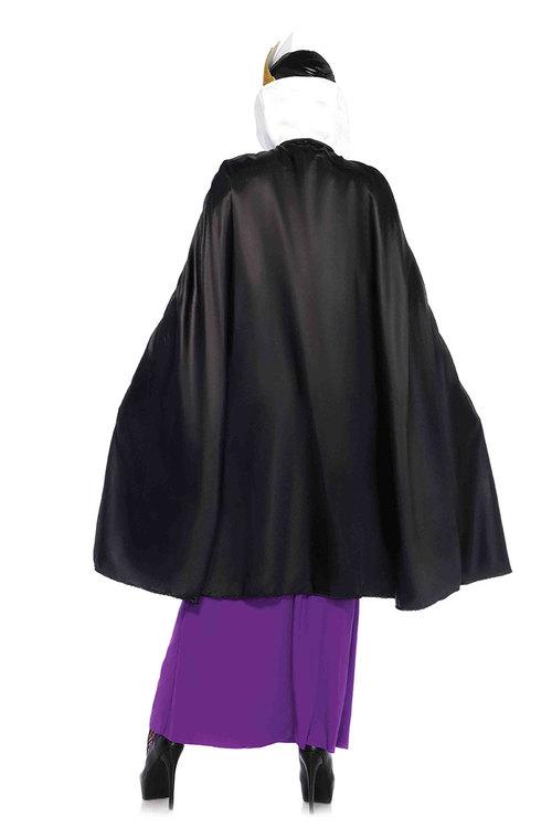 500x750 Evil Queen Adult Costume